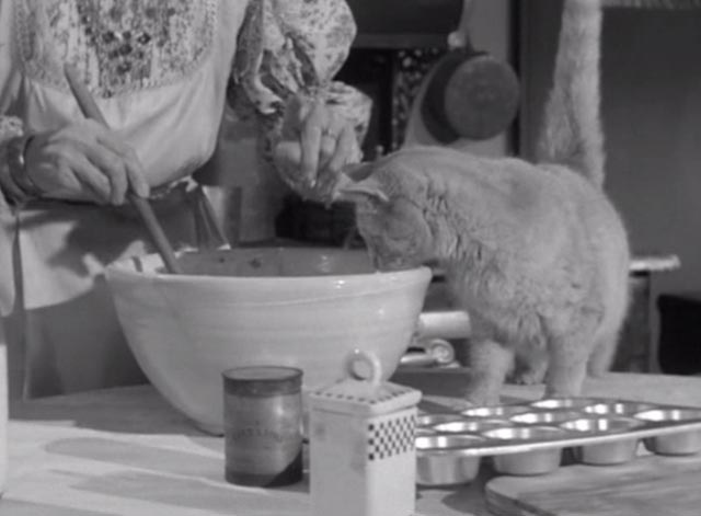 Alfred Hitchcock Presents - There Was an Old Woman - orangy tabby cat Tippie beside mixing bowl