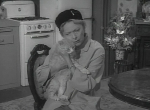Alfred Hitchcock Presents - Miss Paisley's Cat Stanley cat