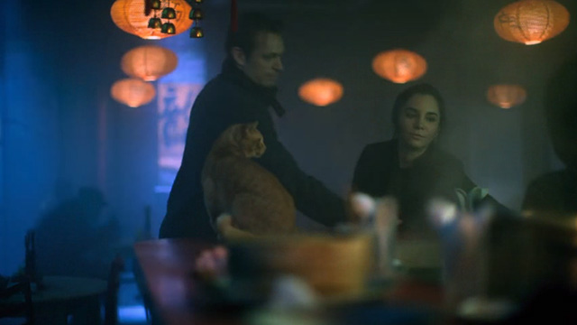 Altered Carbon - Man With My Face - ginger tabby cat on bar with Kovacs Joel Kinnaman and Ortega Martha Higereda