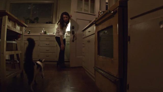 American Gods - Git Gone - long-haired tuxedo cat Dummy let out by Laura Emily Browning
