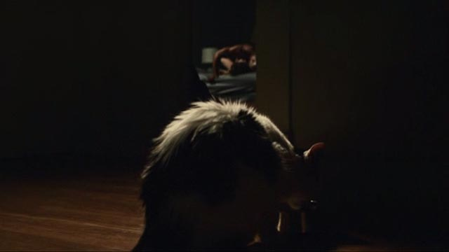 American Gods - Git Gone - long-haired tuxedo cat Dummy drinking from bowl with Laura Emily Browning and Shadow Ricky Whittle making love in background