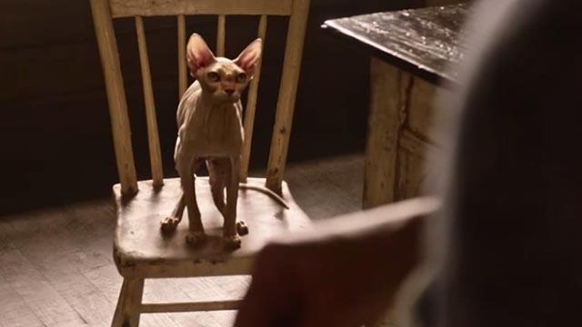American Gods - Head Full of Snow - Sphynx cat still sitting on chair at table