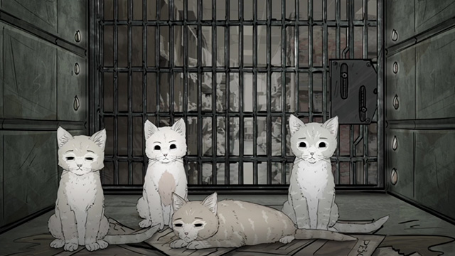 Animals - kittens inside cage