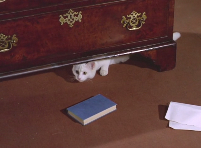 The Avengers - The Hidden Tiger - white cat under dresser