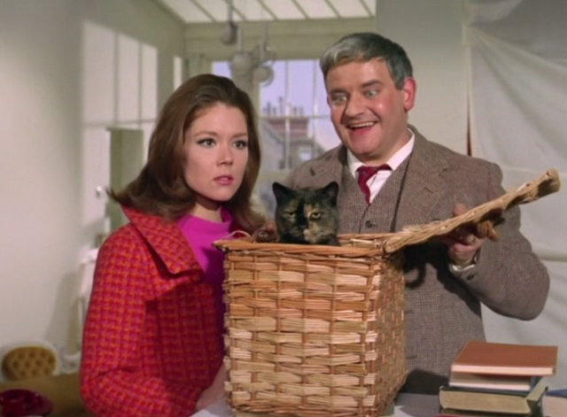 The Avengers - The Hidden Tiger - Cheshire Ronnie Barker presenting tortoiseshell cat in basket to Emma Peel Diana Rigg