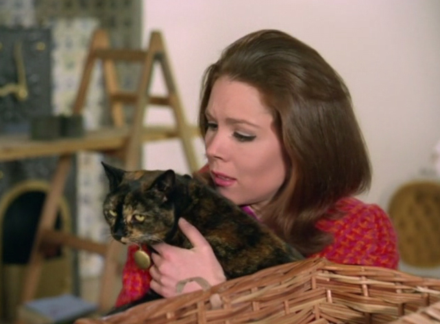 The Avengers - The Hidden Tiger - tortoiseshell cat with Emma Peel Diana Rigg