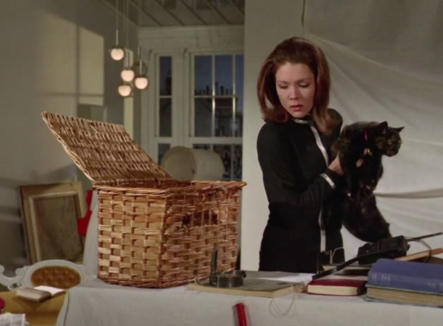 The Avengers - The Hidden Tiger - Emma Peel Diana Rigg holding tortoiseshell cat while looking at compass