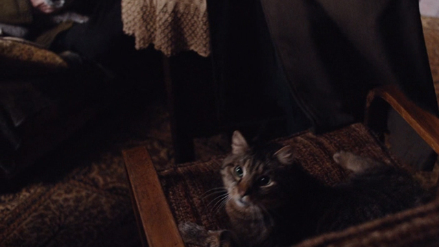 Babylon Berlin - Episode 4 - tabby cat on chair