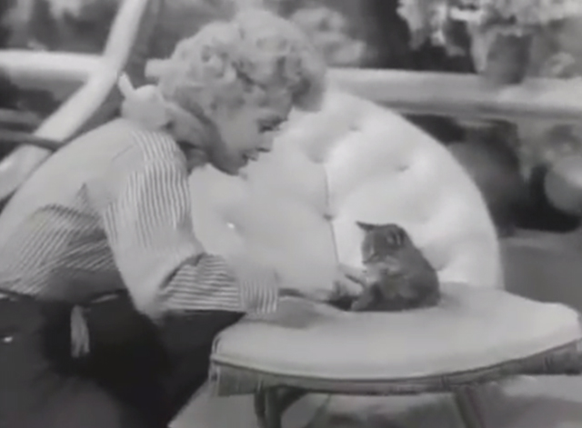 The Beverly Hillbillies - Another Neighbor - Elly May Donna Douglas giving tabby kitten Tommy bowl of water on lawn chair