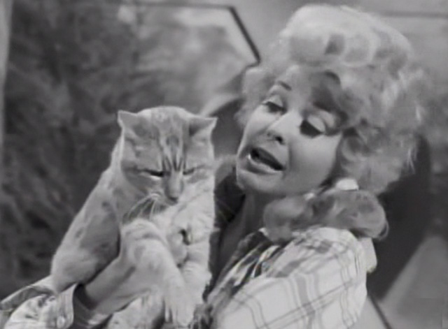 The Beverly Hillbillies - Drysdale's Dog Days - Elly May Donna Douglas holding Rusty cat Orangey