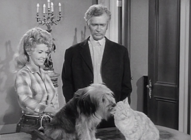 The Beverly Hillbillies - Elly's Animals - Elly May Donna Douglas and Jed Buddy Ebsen looking at Orangey Rusty cat and dog as friends on piano