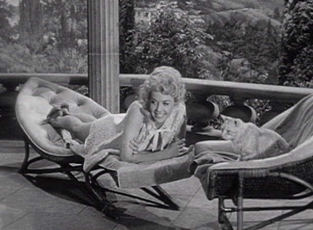The Beverly Hillbillies - Elly's Animals - Elly May Donna Douglas Orangey Rusty cat on lawn chairs by pool
