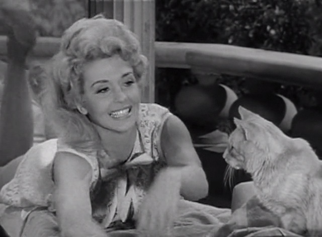 The Beverly Hillbillies - Elly's Animals - Elly May Donna Douglas demonstrating swimming to Orangey Rusty cat on lawn chairs