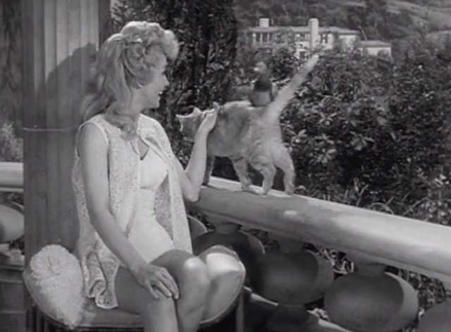 The Beverly Hillbillies - Jed Plays Solomon - Rusty cat Orangey standing with pigeon on back walking past Elly May Donna Douglas