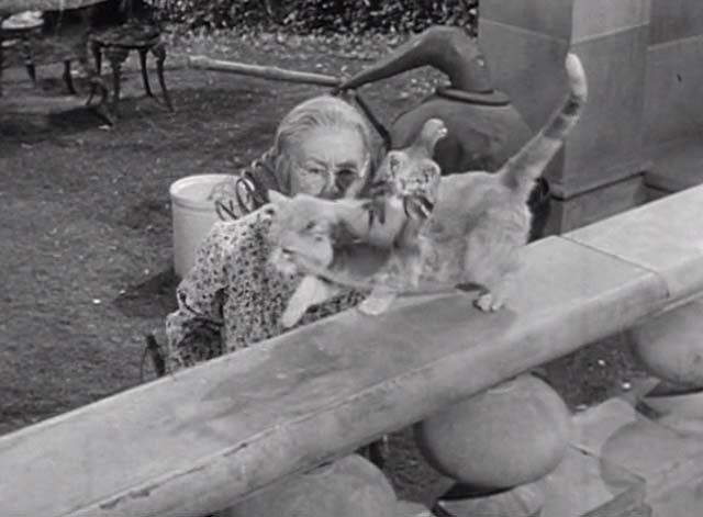 The Beverly Hillbillies - Jed Plays Solomon - Granny stares at Rusty cat Orangey walking with pigeon on back