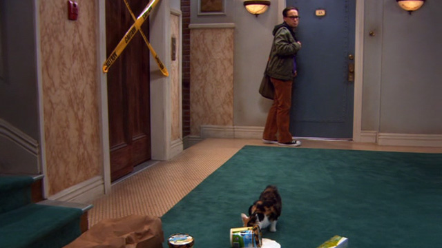 The Big Bang Theory - The Barbarian Sublimation - Leonard Johnny Galecki sees calico cat eating melted ice cream outside Penny's apartment