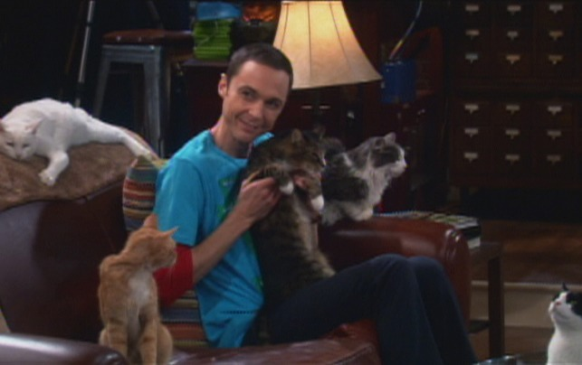 The Big Bang Theory - The Zazzles Substitution - Zazzles