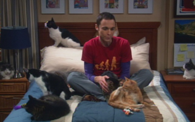 The Big Bang Theory - The Zazzles Substitution bedroom scene