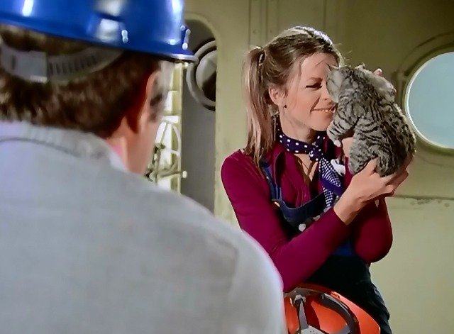 The Bionic Woman - Iron Ships and Dead Men - Jamie Lindsay Wagner holding up kitten