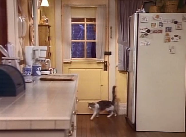 Bob - La Sorpresa - cat Otto walking away from closed kitchen door