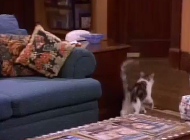 Bob - Unforgiven - cat Otto running into next room