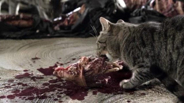 Bones - A Bond in the Boot - cat eating dead man's hand