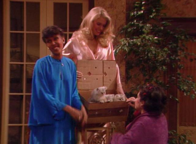 Bosom Buddies - Only the Lonely - Sonny Donna Dixon, Isabelle Telma Hopkins and Amy Wendie Jo Sperber with box of long-haired silver kittens