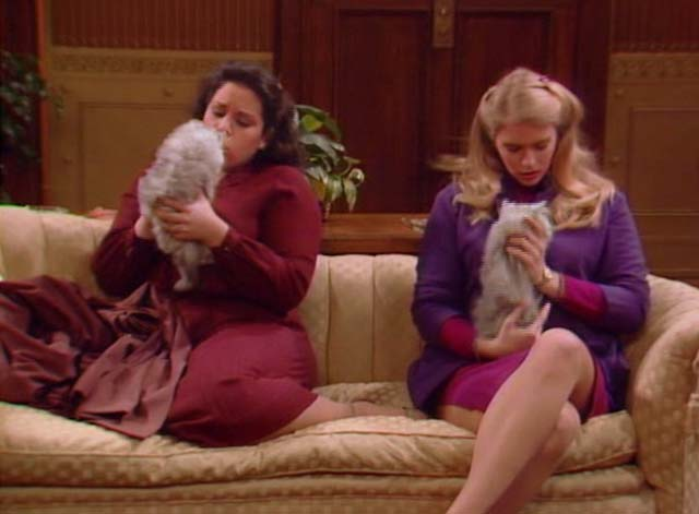 Bosom Buddies - Only the Lonely - Sonny Donna Dixon and Amy Wendie Jo Sperber with long-haired silver kittens on couch