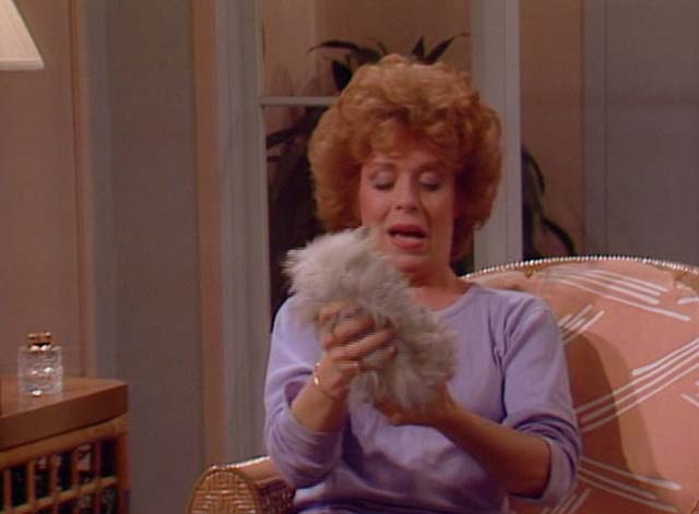 Bosom Buddies - Only the Lonely - Ruth Holland Taylor checking sex of long-haired silver kitten