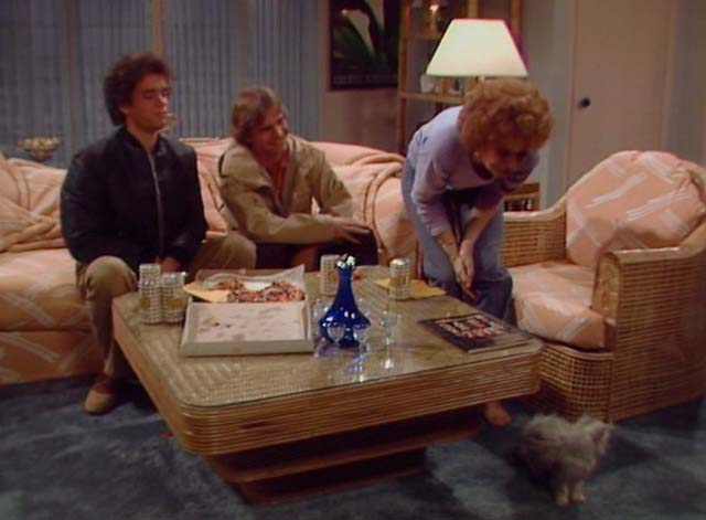 Bosom Buddies - Only the Lonely - Ruth Holland Taylor setting down long-haired silver kitten on floor