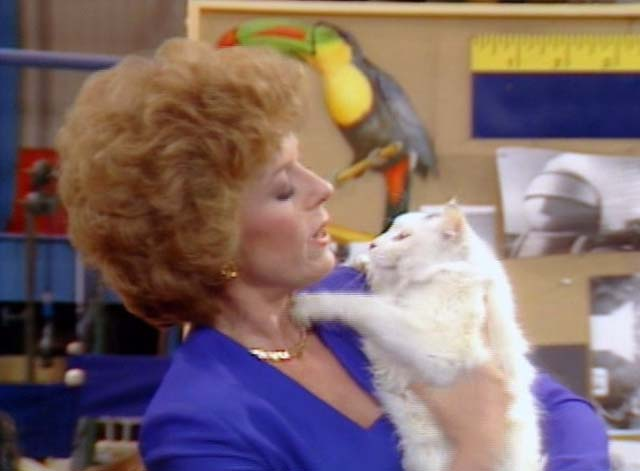 Bosom Buddies - On the Road to Monte Carlo - Ruth Holland Taylor looking at white cat with black markings Pansy