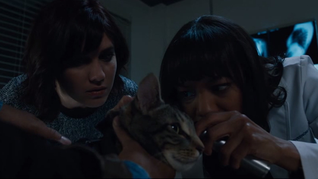 Brain Dead - Wake Up Grassroots Rochelle Nikki M. James and Laurel Mary Elizabeth Winstead talking about the ears of tabby cat Zeke
