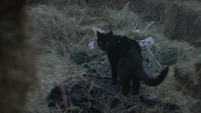 The Chilling Adventures of Sabrina - October Country - black cat Salem on scarecrow clothes