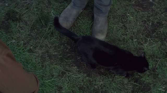 The Chilling Adventures of Sabrina - October Country - black cat Salem at feet of Harvey