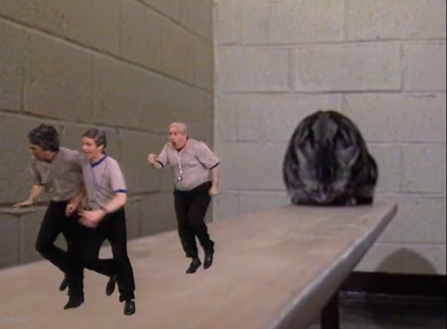 The Dana Carvey Show - Episode 7 - giant cat on bench with small referees running away