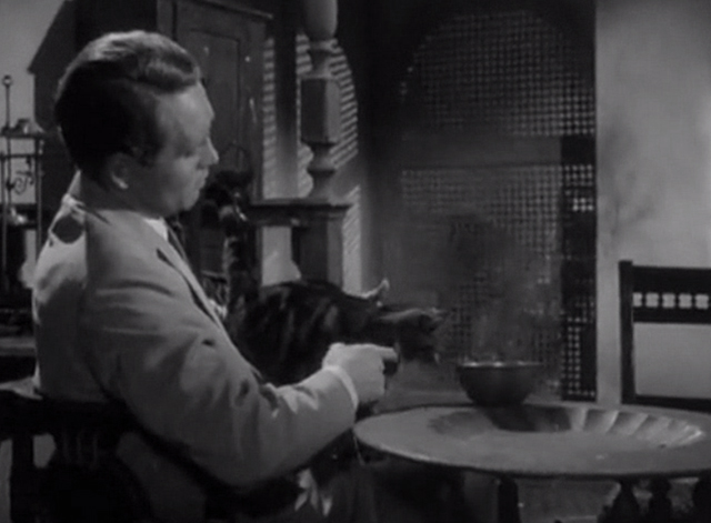 Danger Man - Find and Return - tabby and white cat sitting on John Drake Patrick McGoohan lap