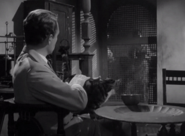 Danger Man - Find and Return - tabby and white cat sitting on John Drake Patrick McGoohan lap looking at door