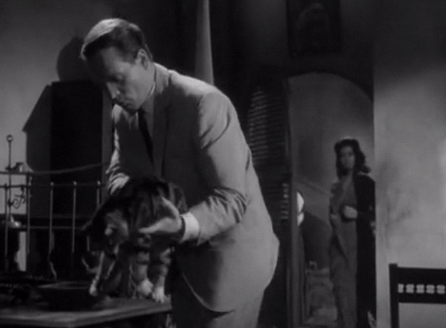 Danger Man - Find and Return - John Drake Patrick McGoohan setting tabby and white cat down on chair