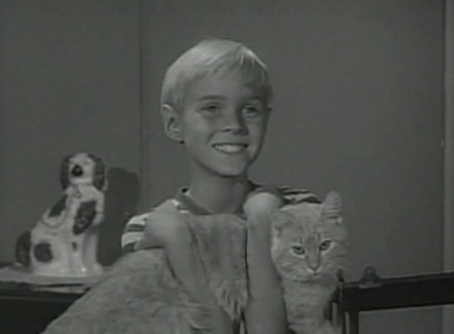 Dennis the Menace - Dennis' Tool Chest - Dennis lures cat from air vent