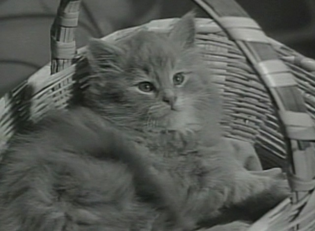 Dennis the Menace - Dennis' Tool Chest - adorable kitten in basket