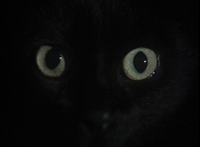 Tales of Mystery and Imagination - The Black Cat close on eyes