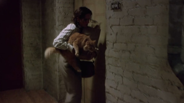 ER - Chicago Heat - Susan Lewis Sherry Stringfield outside apartment with long haired ginger cat in arms