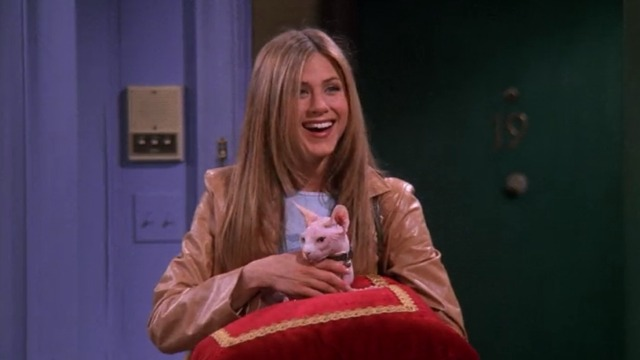 Friends - The One With the Ball - Rachel Jennifer Aniston with Sphynx cat Mrs. Whiskerson