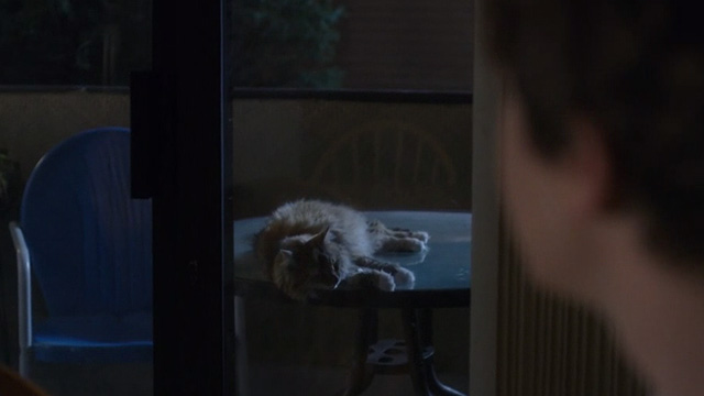 The Good Doctor - Oliver - Dr. Shaun Murphy looking through glass doors at long haired cat lying on patio table
