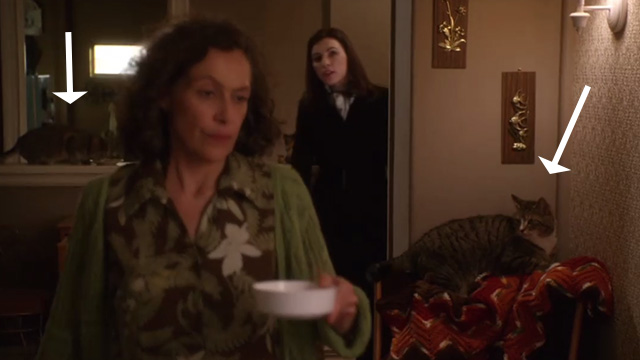 The Good Wife - Pilot - Alicia Julianna Margulies and Mrs. Duretsky Karin Konoval in room with two cats