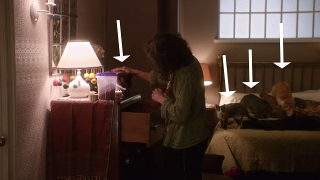 The Good Wife - Pilot - Mrs. Duretsky Karin Konoval in bedroom with four cats