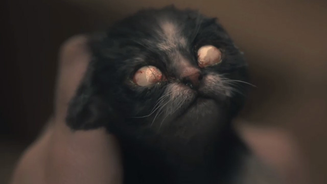 The Haunting of Hill House - Open Casket - newborn kitten with white milky eyeballs