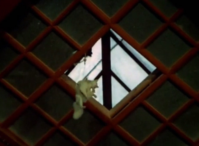 Hawaii Five-0 - King Kamehameha's Blues - white cat Sam being lowered through skylight in harness