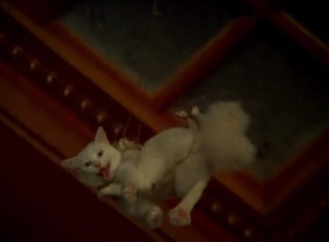 Hawaii Five-0 - King Kamehameha's Blues - white cat Sam meowing while being lowered through skylight in harness