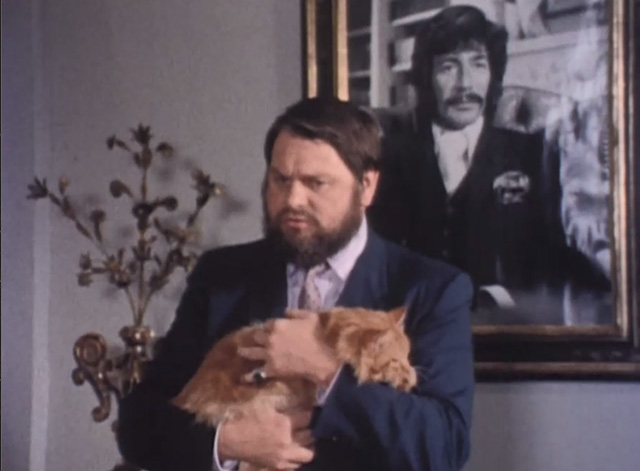 Jason King - That Isn't Me, It's Somebody Else - long-haired ginger tabby cat being held by Bonisalvi George Murcell